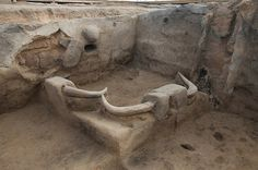 Catalhoyuk. Horn installation. [Links to photo collection of the ongoing archaeological dig!]