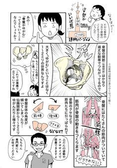 """「女性は出産や生理で""""リラキシン""""というホルモンによって骨盤の靭帯が柔らかくなるため、男性よりもゆがみやすく様々な負担を感じやすいです。産後は半年くらいかけて元の靭帯の硬さに戻ります。もちろん男性も..."""