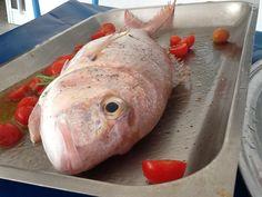 Pesce del giorno al forno