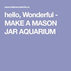 hello, Wonderful - MAKE A MASON JAR AQUARIUM