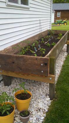 Feed bunk garden