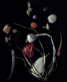 Art + Commerce - Artists - Photographers - Julia Hetta - Still Life