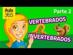 Animales Vertebrados e Invertebrados (Parte 1) | Videos Educativos para Niños - YouTube