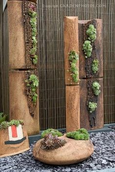 A garden design of terracotta pots and stands planted with succulents. The upkeep would be minimal on this lovely display.