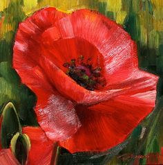 tuscan poppy landscape paintings | Caroline Zimmermann