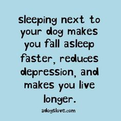 New Medical Insights for Achieving Your Best Night's Sleep Sleeping next to my dog