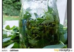 Bylinky v oleji (bazalka, oregano) recept - TopRecepty.cz