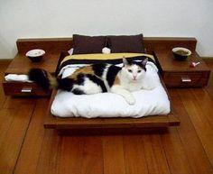 Pet platform bed.