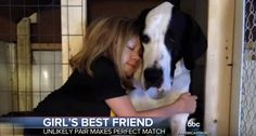Dog Gives Girl With Incurable Disease The Ability To Walk For The First Time