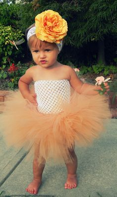 Items similar to Peach Tutu Set with Matching Oversized Peach Flower on 2 inch elastic Newborn photography prop baby headband Lace headband on Etsy Funny Baby Photos, Peach Flowers, Newborn Photography Props, Baby Family, Pretty Baby, First Baby, Little People, Baby Fever, Future Baby