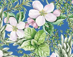 Gouache, My Works, Scrapbooking, Behance, Photoshop, Herbs, Profile, Gallery, Spring
