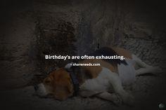 Birthday's are often exhausting.
