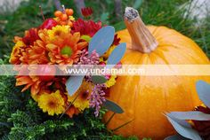 Buchet de mireasa autumnal din crizanteme si catina