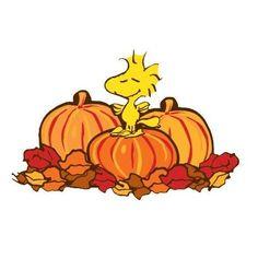 Peanuts - Woodstock & Pumpkins