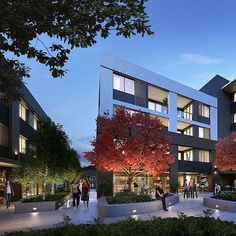 Encapsulating local neighbourhood charm at Beecroft Place #dkoarchitecture