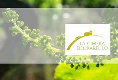 Cimera d'excepció per la Xarel·loThe xarel·lo summit, a Xarel·lo Day of exception, the grape's G-30 in support of the grape is to be celebrated in the Penedès. An occasion for championing the Xarel·lo with presentations and tasting great wines.  When: 29 of June Where: Ermita de Foix Time: 15h - 22h