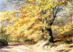 Autumn Beech Trees – watercolor by Dorothy Pavey - Gouache Painting Watercolor Trees, Watercolor Artists, Watercolor Techniques, Watercolor Landscape, Landscape Art, Landscape Paintings, Watercolor Paintings, Bird Paintings, Indian Paintings