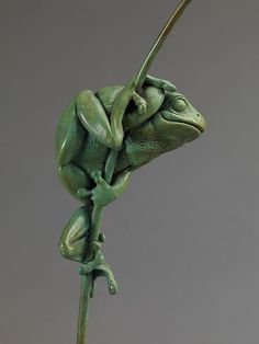 ART - Nick Bibby - tree frog