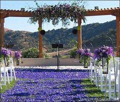 purple outdoor ceremony 2