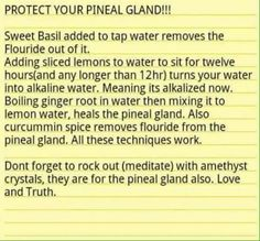 Your pineal gland is the 'seat of the soul' ...decalcify it ☺