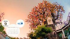Disney Calendar, Tumblr Pattern, Phone Wallpaper For Men, Desk Gifts, Phone Backgrounds Tumblr, Pastel Designs, Calendar Wallpaper, Tokyo Disney Resort, Tumblr Photography