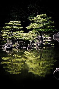 Travel Asian Japan Green garden reflection Connaissez vous Kishori Amonkar