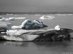 Dirty Icebergs