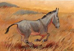 Equus hydruntinus by Margarita Panova on DeviantArt