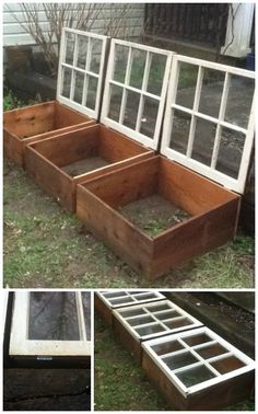 Old windows for garden growing boxes outside` perfect to keep pests out and light in. love the idea