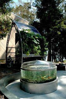 Aquaponics systems | http://roboreel.com/