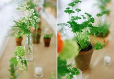 flowers in bottles and potted plant wedding centerpieces Wedding Prep, Farm Wedding, Wedding Bells, Wedding Table, Diy Wedding, Wedding Things, Wedding Ideas, Potted Plant Centerpieces, Floral Centerpieces