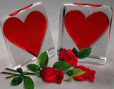 To my dear Joe♡♡♡, forever in my heart♡. I Love You Pictures, Beautiful Love Pictures, Heart Pictures, I Love Heart, Love Rose, Hearts And Roses, Red Roses, Valentines Day Hearts, Happy Valentines Day