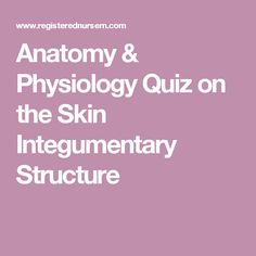 Anatomy & Physiology Quiz on the Skin Integumentary Structure