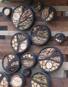 Insect hotel to attract beneficial insects