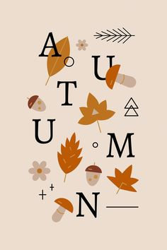 Download premium vector of Autumn element pattern background vector by katie about fall, maple leaves, forest patterns, autumn plant, and fall leaf shapes 936076