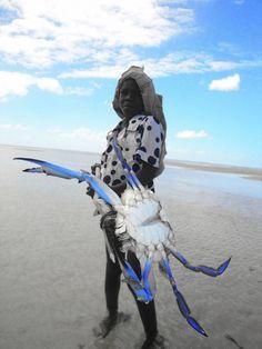 Hunting crabs - foto gemaakt in Bazaruto Archipel NP, Mozambique