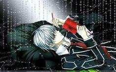 Zero / Vampire Knight