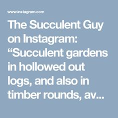 """The Succulent Guy on Instagram: """"Succulent gardens in hollowed out logs, and also in timber rounds, available from the Succulent Guy at the Byron Bay Beachside Market -…"""""""