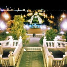 Noche en el parque. Zaragoza. SPAIN