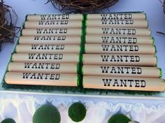 """Photo 1 of 11: ROBIN HOOD BIRTHDAY PARTY / Birthday """"TOUT MON AMOUR """" 