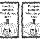 Freebie emergent reader for October/November.... It contains lots of beginning sight words and color words. Your little ones are sure to love it! ...