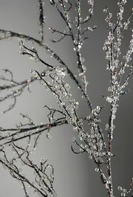 icy branches with Epsom salts This is awesome and I could use it!