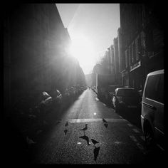 Martina Stanek (@martina.stanek) photographs the streets of #Paris in Seagulls & Pigeons one of the winning pictures from The Print Swap. @theprintswap is a new way for photographers to connect and share their work. Photographers can submit images using the hashtag #theprintswap. Each winner will give a print and receive a print from someone else in exchange. Its free to apply and we take care of shipping though winners pay a one-time cost of $40. // #photocontest #fineartphotography…
