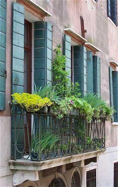 Piękny ogród na balkonie  Projektowanie i pielęgnacja ogrodów: www.transgaj.pl  Balcony garden