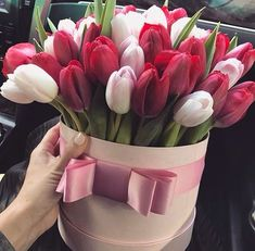 There is no doubt that flowers can help you expressing your hidden love, emotions and feelings for your loved one. If you want to make your husband feels positive about you, it is time to send him flowers online. Tulips Flowers, All Flowers, My Flower, Fresh Flowers, Planting Flowers, Beautiful Flowers, Roses, Send Flowers, Pink Tulips