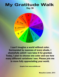 Today I will dance in the wonder of color. Will you join me? Share your insights, discoveries, joys - I'd love to hear from you!