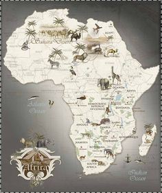 Safari Map of Africa