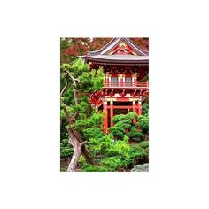 Pinterest / Search results for japanese tea garden ❤ liked on Polyvore