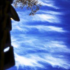 푸른하늘 으으나수-