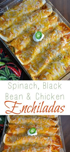 These Spinach, Black Bean and Chicken Enchiladas are rolled in flour tortillas, covered in a delicious homemade sauce and smothered in gooey cheese!  Using pre-made rotisserie chicken makes them ready in a snap!